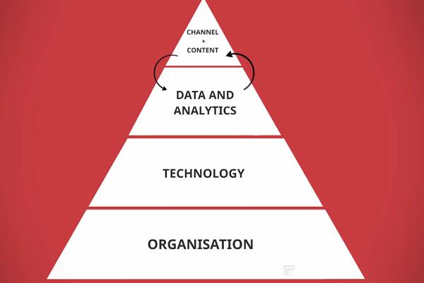 Organisation layer