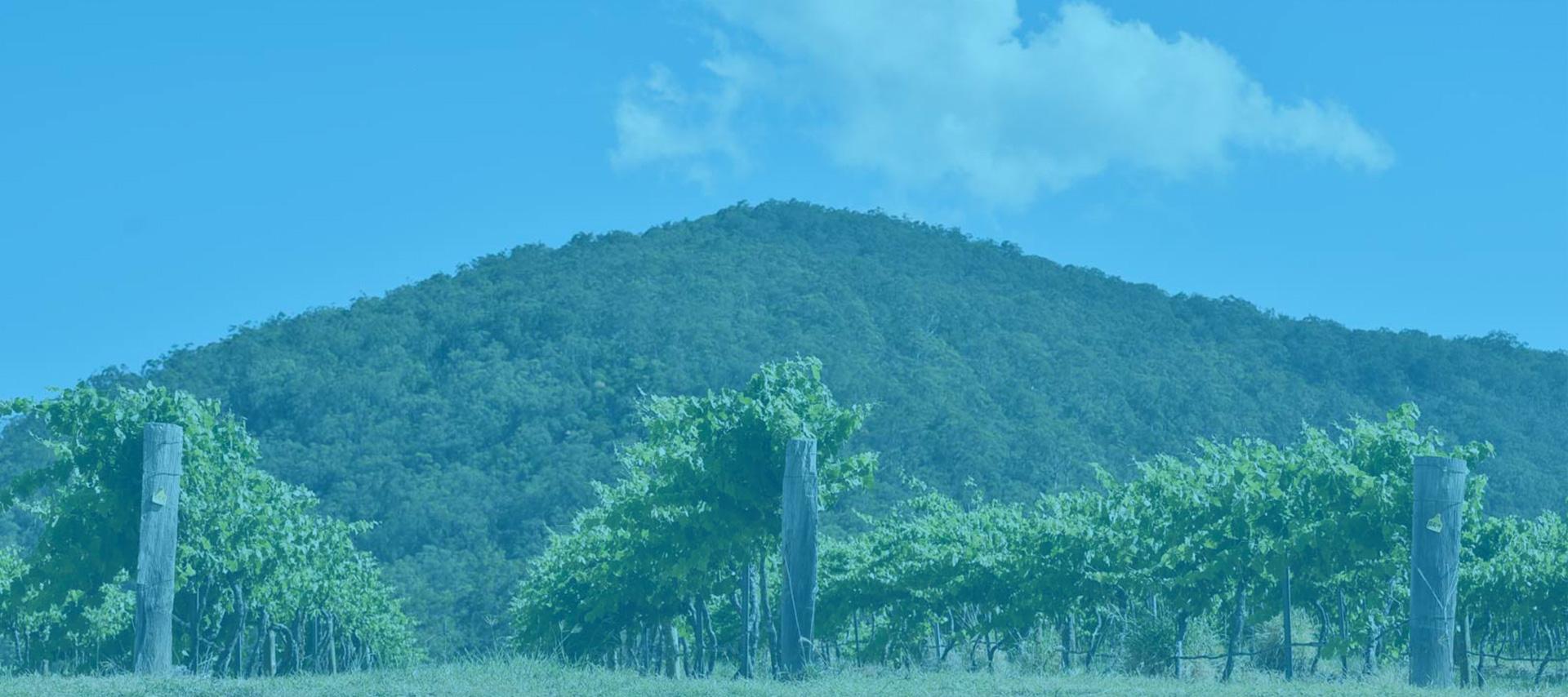AS15-HV-blue-bg