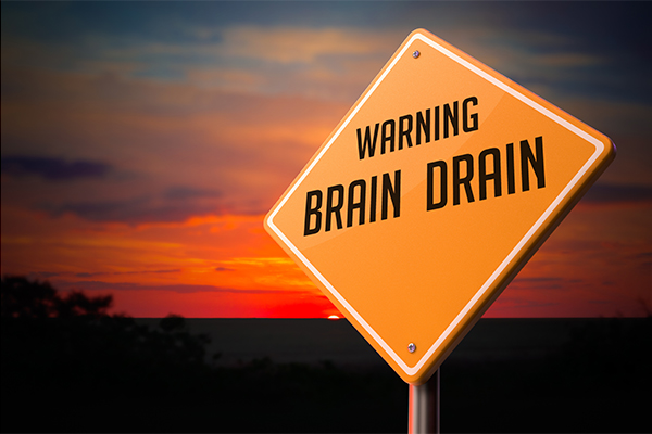 Warning brain drain